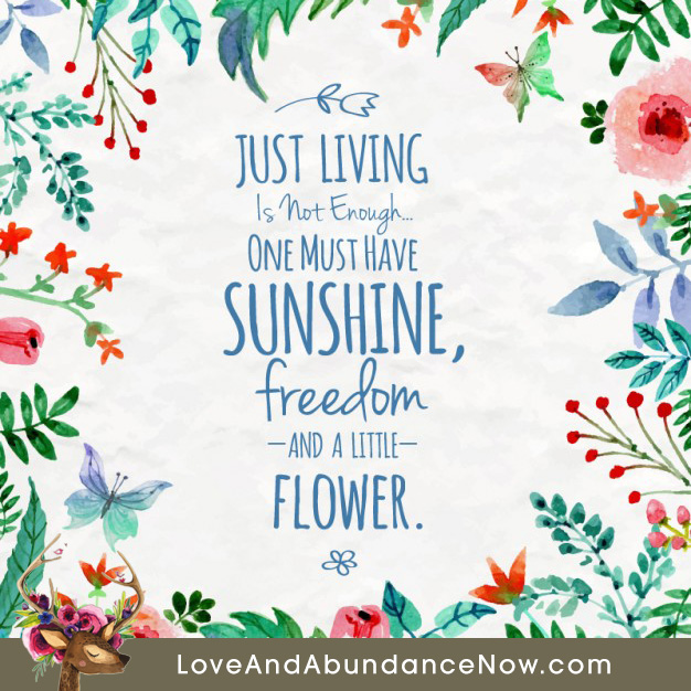 Just living is not enough. One must have sunshine, freedom and a little flower – free inspirational quotes, life quote, inspirational quotes, ...